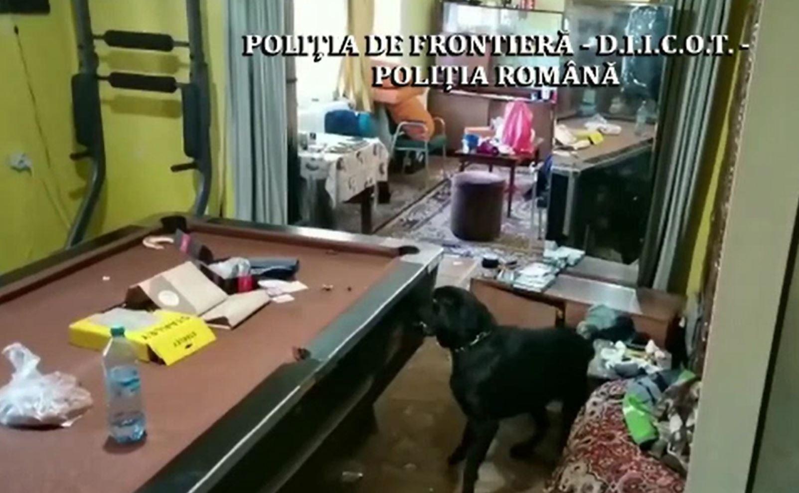 Percheziţii de amploare în Sighetu-Marmaţiei, pentru depistarea traficanților de droguri