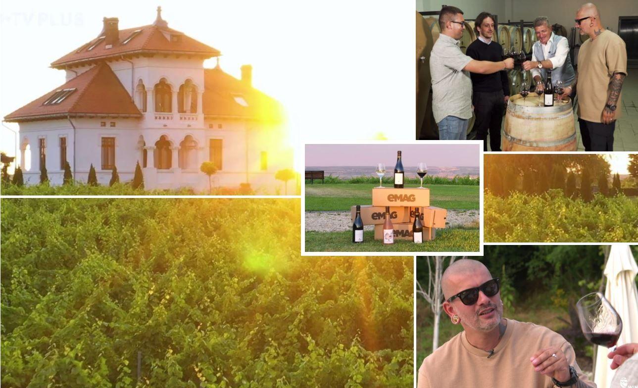Wine Trips România | Descoperind vestitul Negru de Drăgășani la Crama Avincis