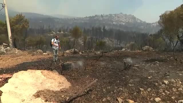 Doi oameni au murit în incendiile violente din Grecia. În urma lor rămâne un peisaj dezolant