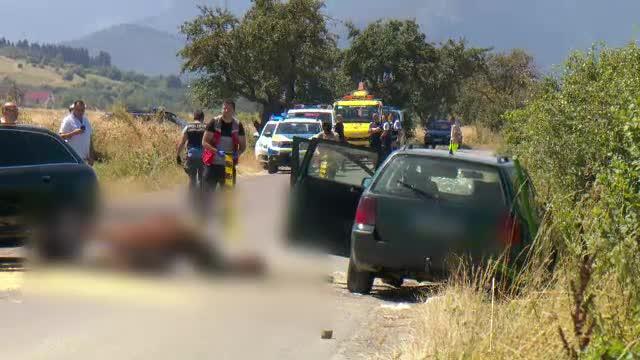 Două fetițe surori au murit după ce un șofer vitezoman care se grăbea la o nuntă le-a spulberat căruța