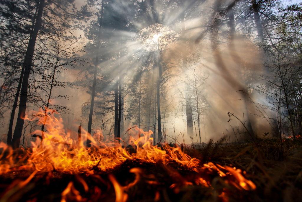 Premieră istorică nefastă: Fumul produs de incendiile devastatoarea din Siberia au atins Polul Nord