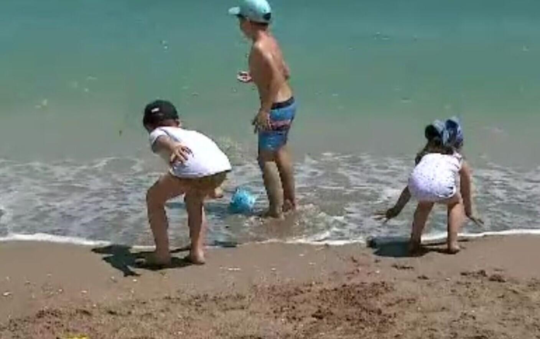 Copil de 3 ani, mușcat de câine în timp ce se afla în apă, pe plaja din Mamaia