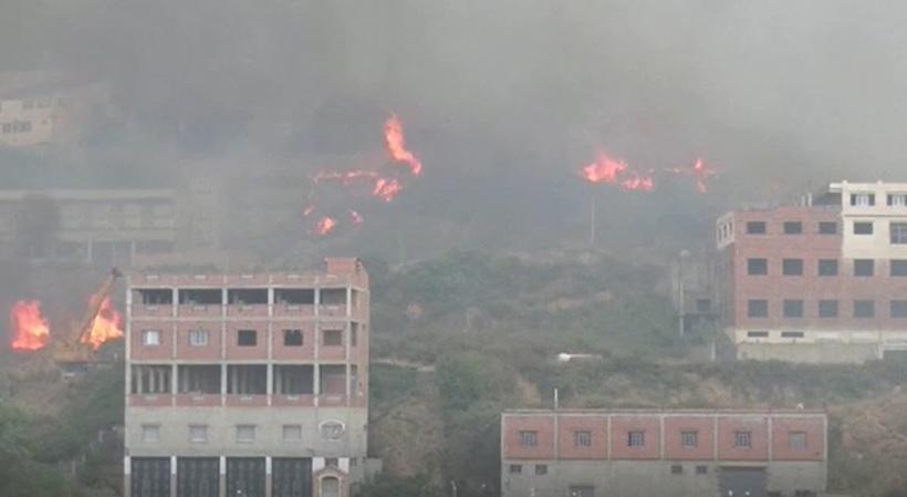 Peste 60 de oameni au murit în incendiile violente de vegetație din Algeria