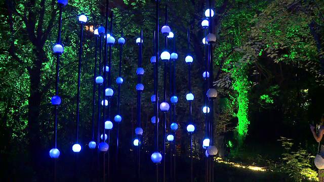 Focul, apa, pământul și aerul, îmbinate spectaculos într-o expoziție de lumini, în Capitală. Ce orașe urmează