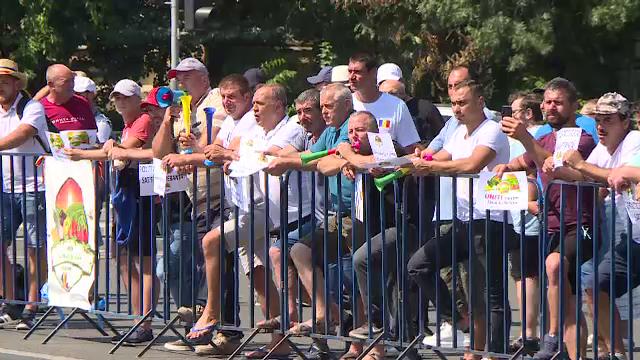 Fermierii români cer sprijin Guvernului, nemulțumiți că nu au unde să îşi vândă marfa. Ce soluții au