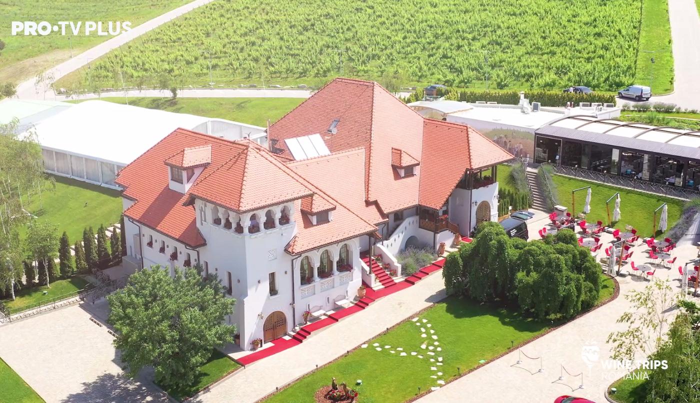 Wine Trips România | Răsfăț culinar și vinuri de poveste pe tărâmul bucuriei al Casei Timiș