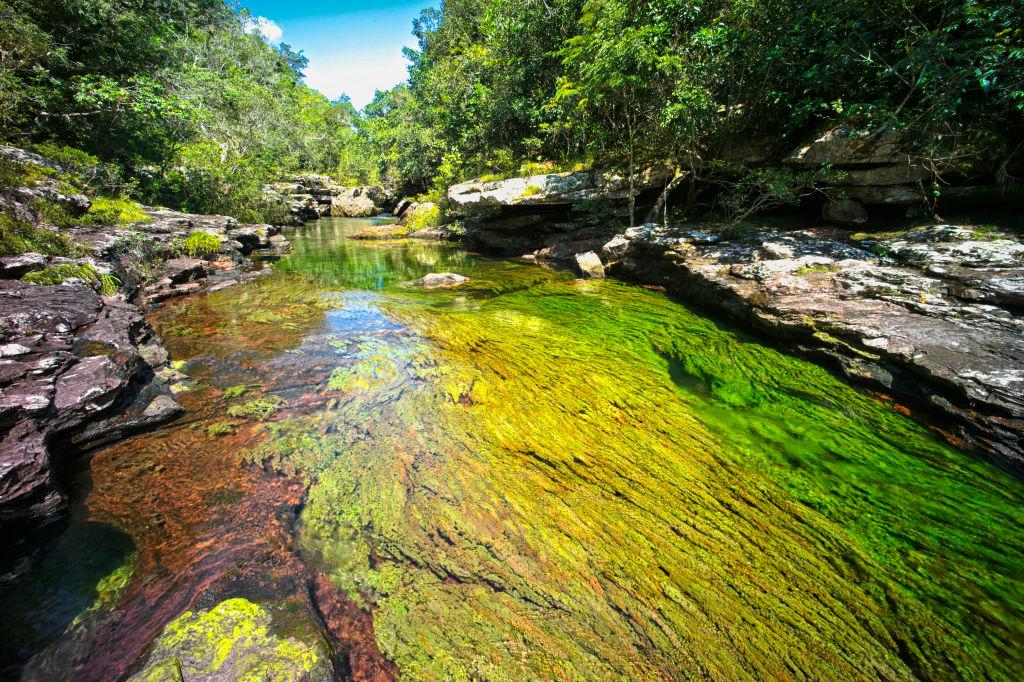 """Imagini ireale cu """"Râul celor 5 culori"""". Unde se află și de ce are apa colorată GALERIE FOTO"""