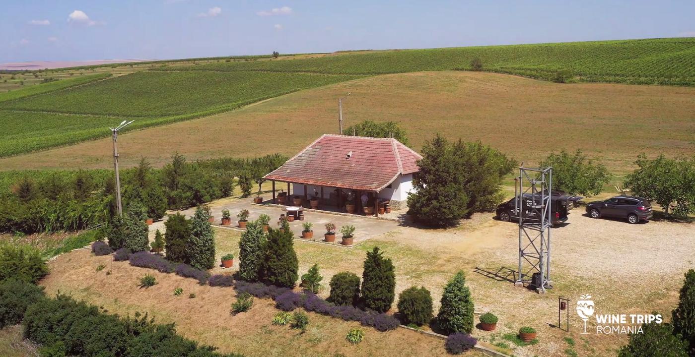 Wine Trips România | Descoperind Oltenia profundă la Crama Oprișor