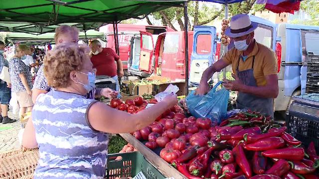 Mână de ajutor oferită de Guvern micilor fermieri: