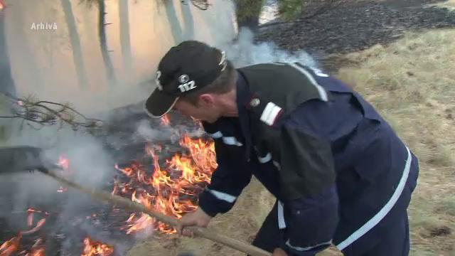 Incendii de vegetație în România. Unele ar fi fost provocate de țigări aruncate la întâmplare