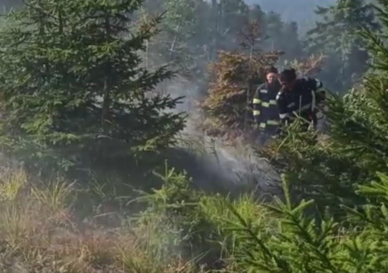 Incendiu de pădure, luni seară, în apropiere de Băile Olănești. Pompierii nu au putut interveni decât spre dimineață