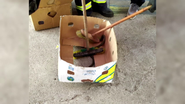 Panică într-un magazin din Neamț. Un șarpe a fost găsit într-o cutie de legume