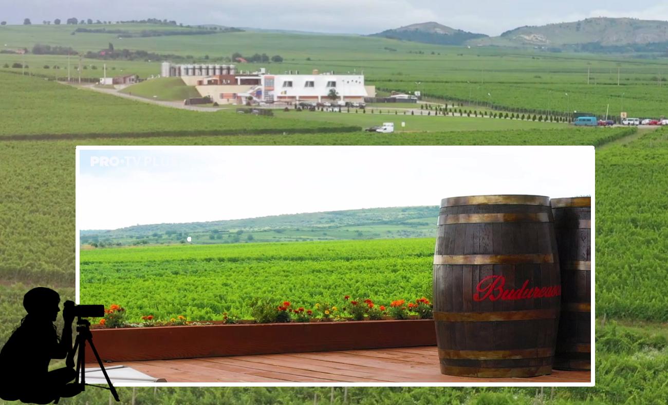 Wine Trips România | Crama Budureasca, locul în care vinul e mereu acasă