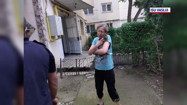 O pisică a fost salvată după ce a căzut în gol de la etajul patru al unui bloc din județul Vaslui. VIDEO