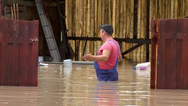Șuvoaiele au făcut prăpăd în țară. Oamenii au încercat prin apa până la brâu să-și salveze animalele