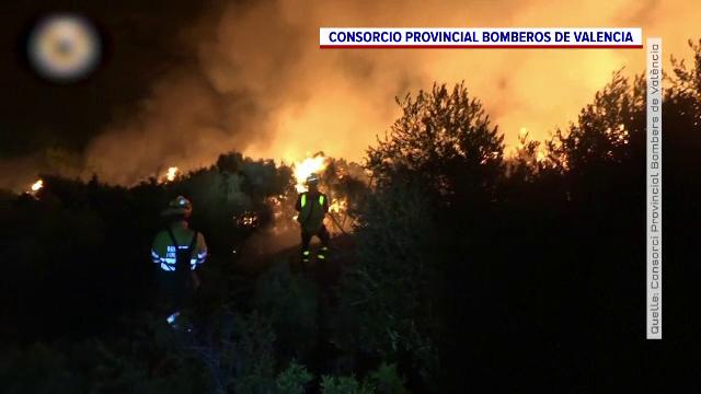 Ce soluție au găsit autoritățile dintr-un sat din estul Spaniei pentru a preveni incendiile de vegetație