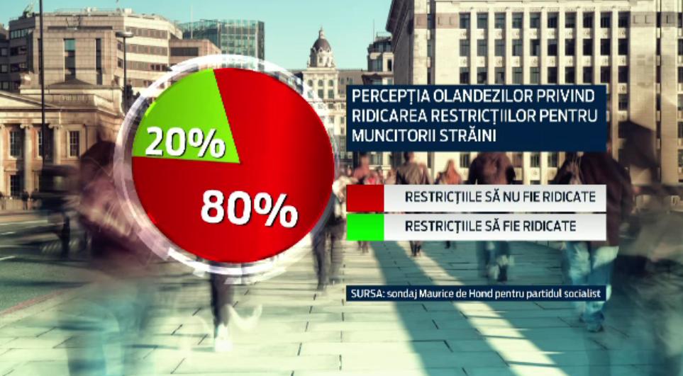 80% dintre olandezi nu sunt de acord cu accesul romanilor si bulgarilor pe piata muncii batave