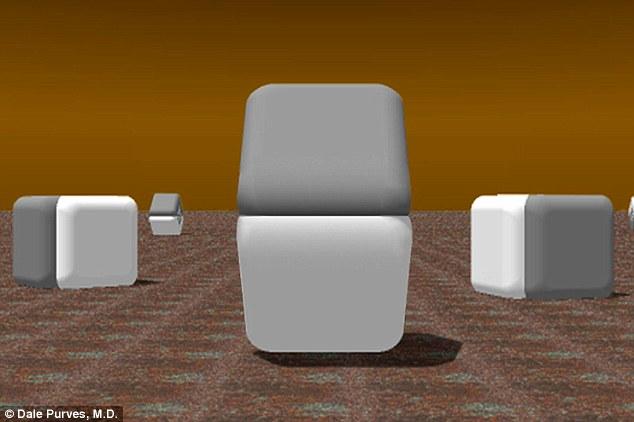 O iluzie optica care iti inseala privirea. Culorile celor doua blocuri te vor surprinde