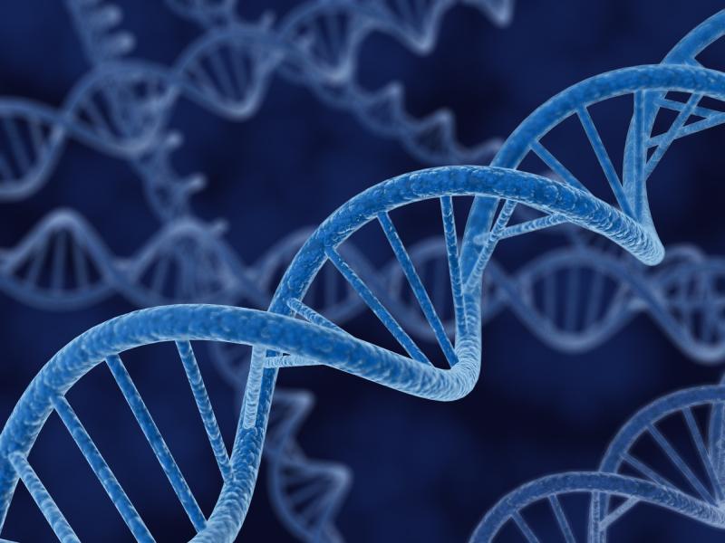 Descoperire istorica. Cercetatorii americani au identificat un al doilea cod genetic din ADN