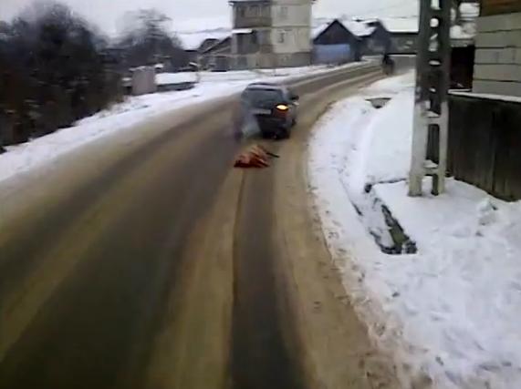Isprava unui roman. Un barbat din Bistrita a legat porcul de masina si l-a tarat pe un drum national