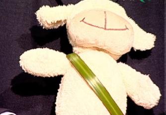 Pufulica a ajuns vedeta pe internetul romanesc. PRO FM a remixat mascota verde VIDEO si AUDIO