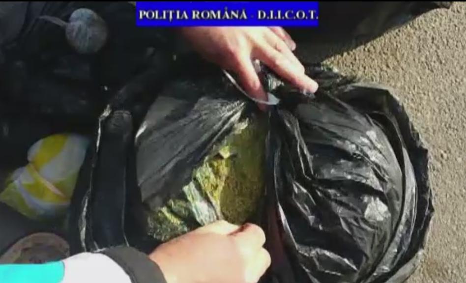 Captura impresionanta de cannabis in Prahova si Severin. Politia a confiscat 10 kg de stupefiante si a arestat 4 persoane