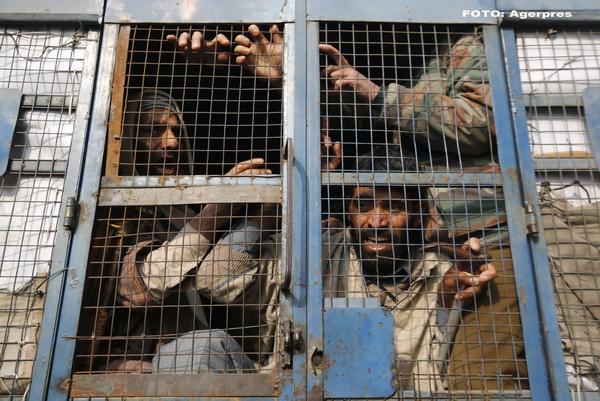 Aproape 600 de oameni au murit torturati de politia din India, intre 2010 si 2015. Niciun ofiter de politie n-a fost pedepsit