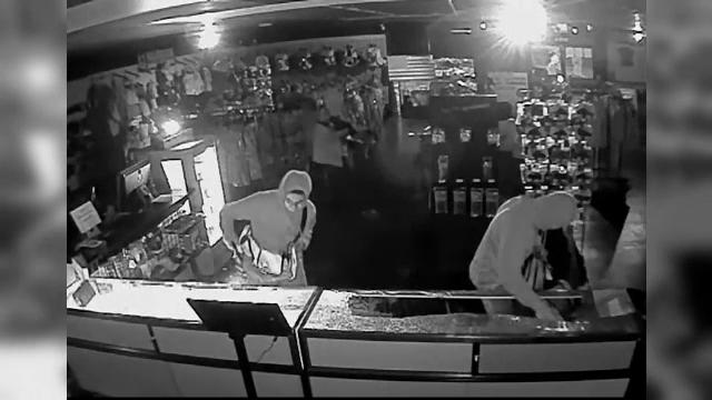 30 de arme, printre care 25 de pistoale semi-automate, trei revolvere şi trei puşti, furate în ziua de Crăciun