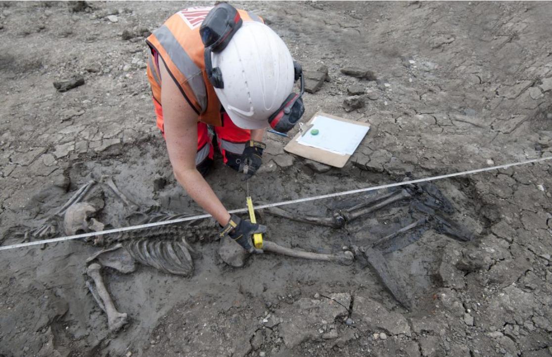 Schelet de acum 500 de ani, descoperit în râul Tamisa. Obiectul care a dus la identificarea bărbatului