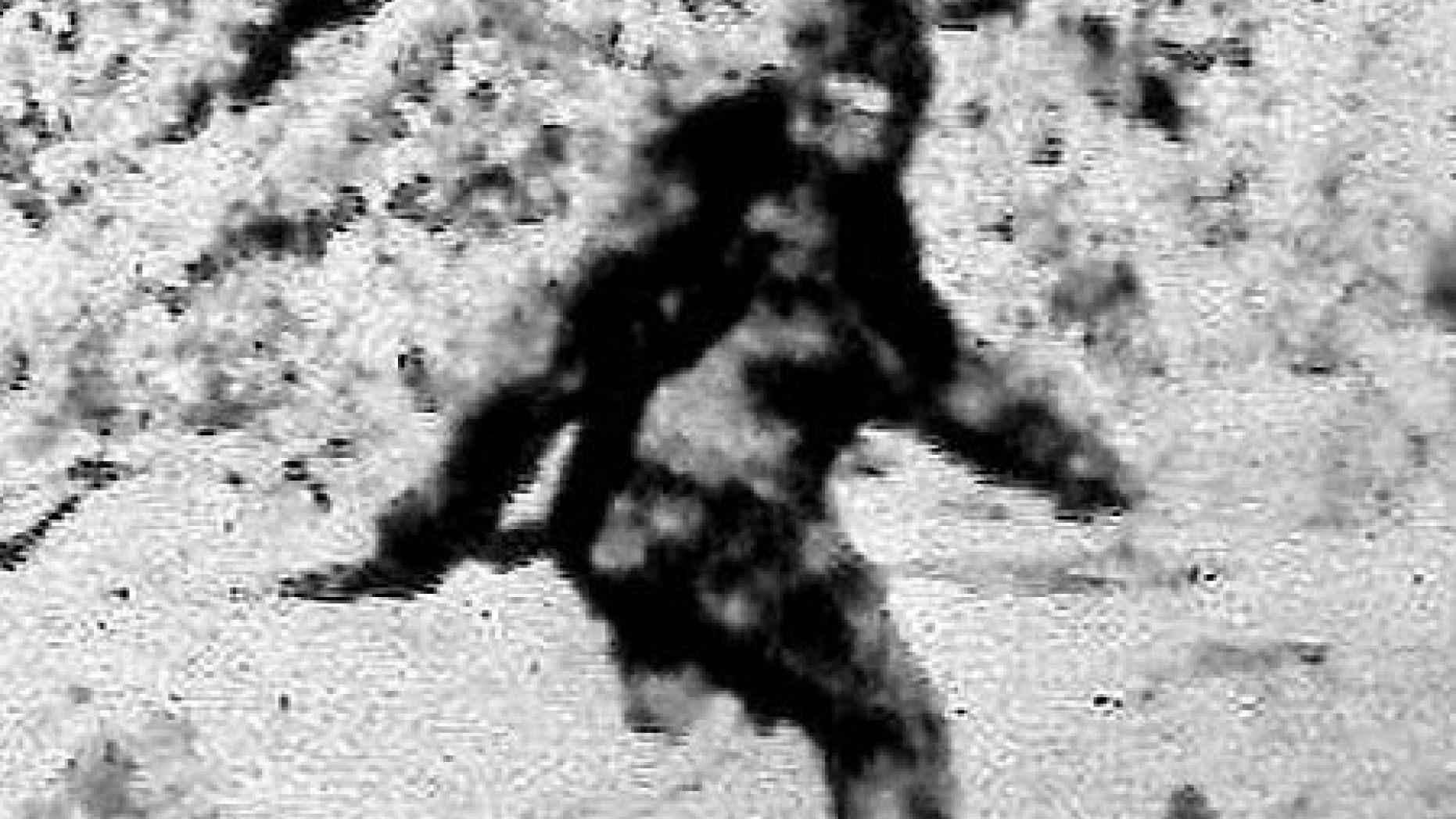 Un vânător a crezut că îl vede pe Bigfoot şi a început să tragă. Ce a împuşcat în realitate