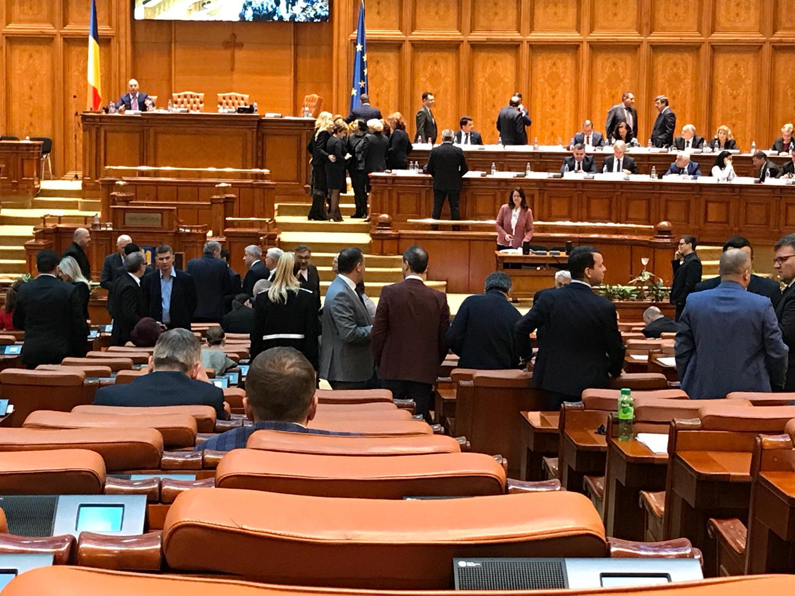 """Versuri în Parlament: """"Degeaba aveţi 10 la economie, bugetul dumneavoastră e o poezie"""""""
