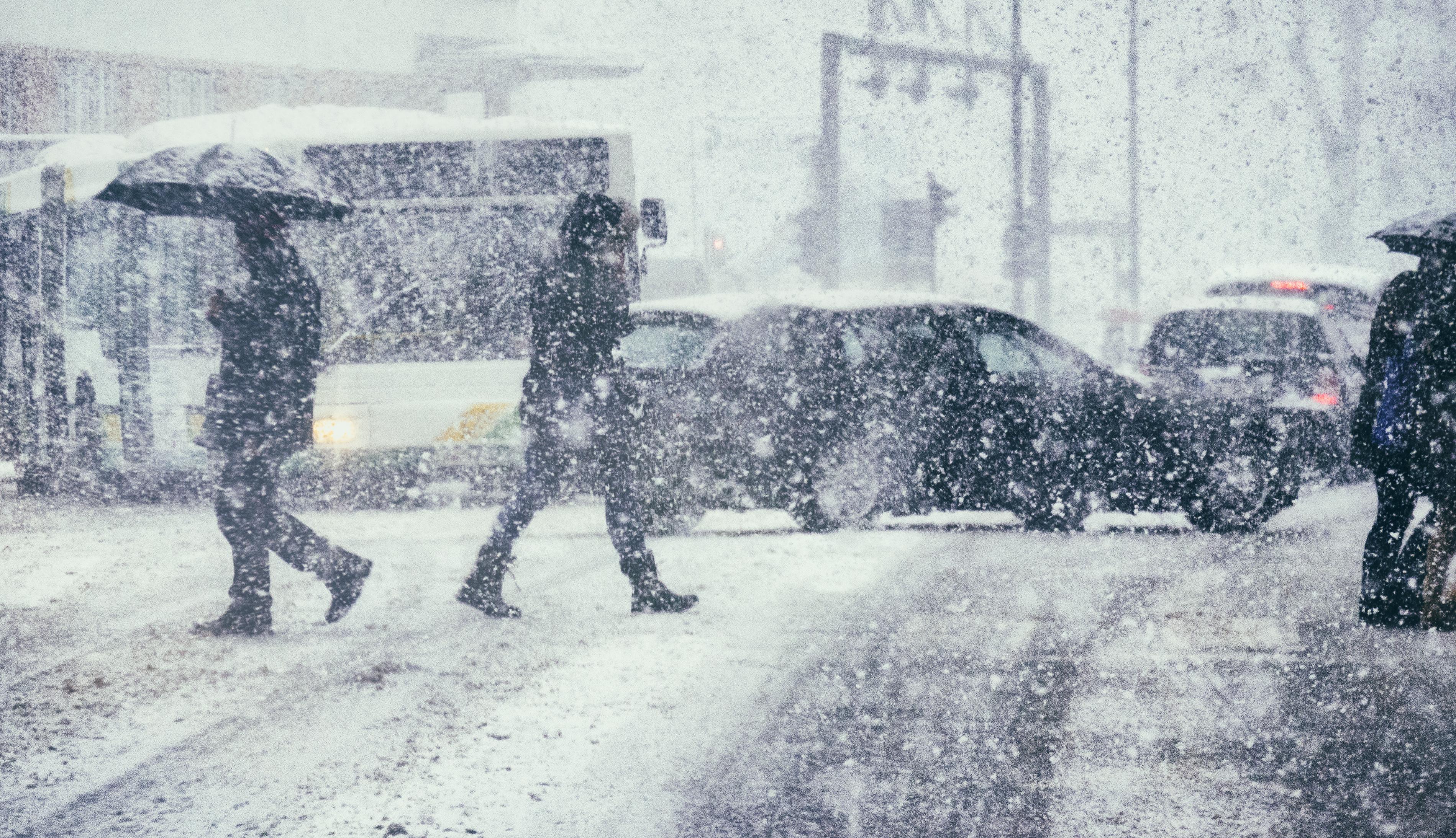 Iarnă în aprilie. ANM a emis Cod galben de ninsori și vânt puternic