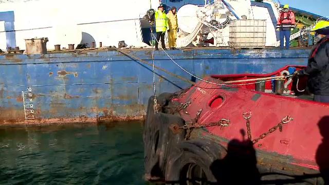 """Pericol uriaș în portul Midia. Specialiștii anunță că apa e contaminată: """"Se descompun"""