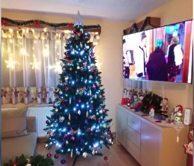 Bradul de Crăciun, o sursă de optimism și alinare în 2020. Românii se pregătesc deja pentru Sărbătorile de iarnă