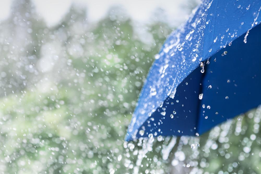 Ploi în cea mai mare parte a țării începând de joi. Zonele în care va ninge