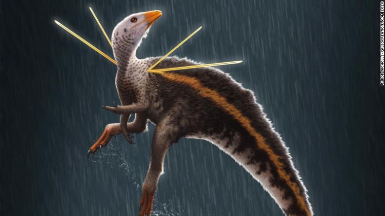 Fosilele unui dinozaur cu ''păr'' şi ''panglici'', găsite de oamenii de știință în Brazilia