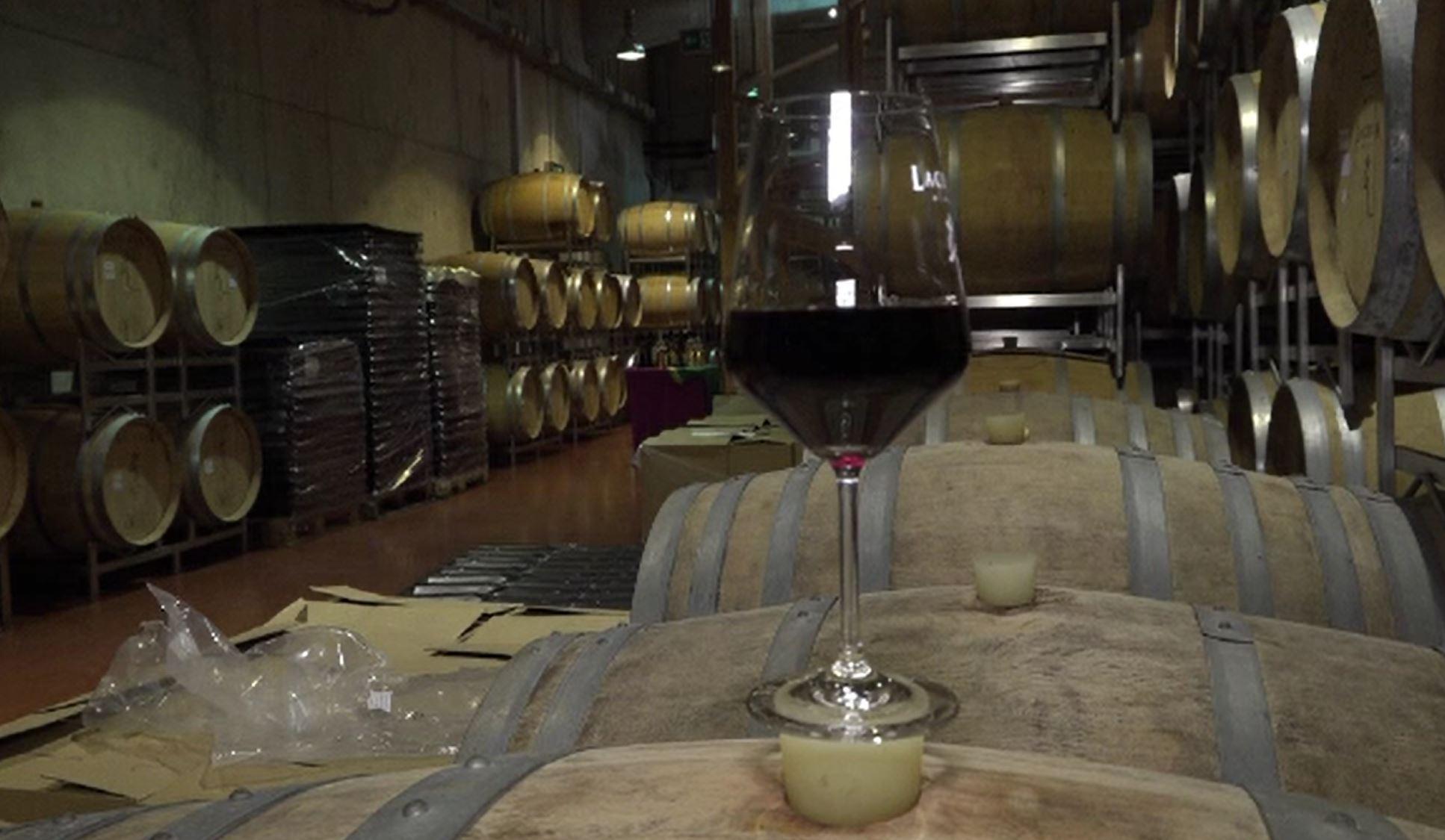 Cum să alegeți vinul în funcție de preparatele culinare servite. Sfaturi din partea specialiștilor