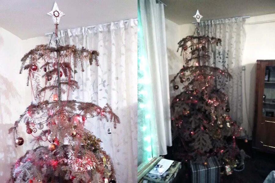 """Doi frați din Alba țin în casă un brad natural împodobit de 14 ani. """"La noi e în permanență Crăciun"""""""