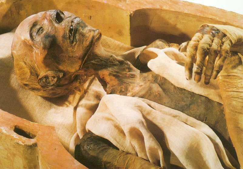 Traieste cu doua mumii in casa! Cea a sotului si a surorii sale