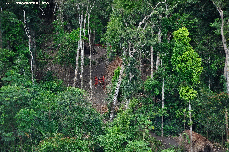 Un trib izolat din bazinul Amazonului, fotografiat pentru prima data. Barbatii au vrut sa atace avionul cu sulitele