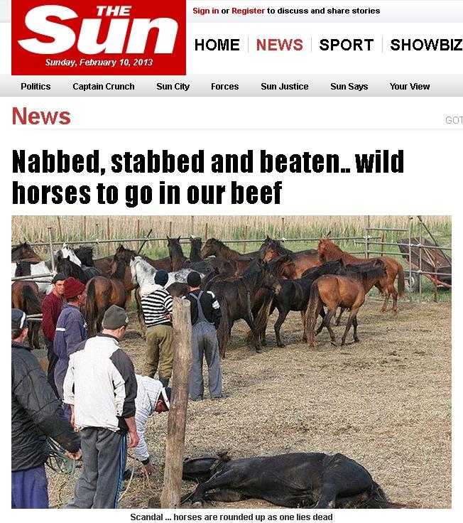 The Sun: Cai salbatici supusi unor rele tratamente in Romania ar fi fost sacrificati pentru export