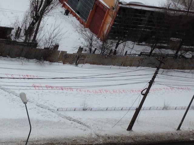 Cerere in casatorie inedita. Un tanar din Romania si-a cerut iubita de sotie cu un mesaj scris in zapada