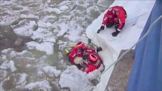 Caine salvat din mijlocul raului de garda de coasta din Michigan. Ce s-a intamplat cu patrupedul