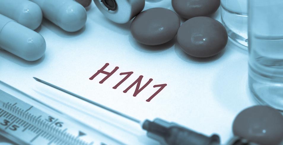 Cate cazuri de gripa porcina au aparut in Romania, dupa izbucnirea epidemiei in Ucraina. Vama Siret e in stare de alerta