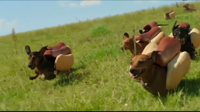Reclamele de la SuperBowl 2016. Fetele imbracate sumar, inlocuite de animale simpatice. Cat costa 30 de sec. de publicitate