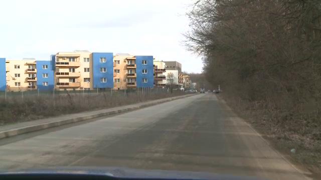 O zona rezidentiala din Capitala, asaltata de porci mistreti. Unde au fost construite blocurile