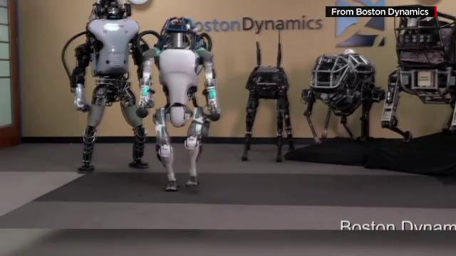 O petitie online cere oprirea violentei impotriva robotilor. La ce teste sunt supusi acestia pentru a-si arata abilitatile