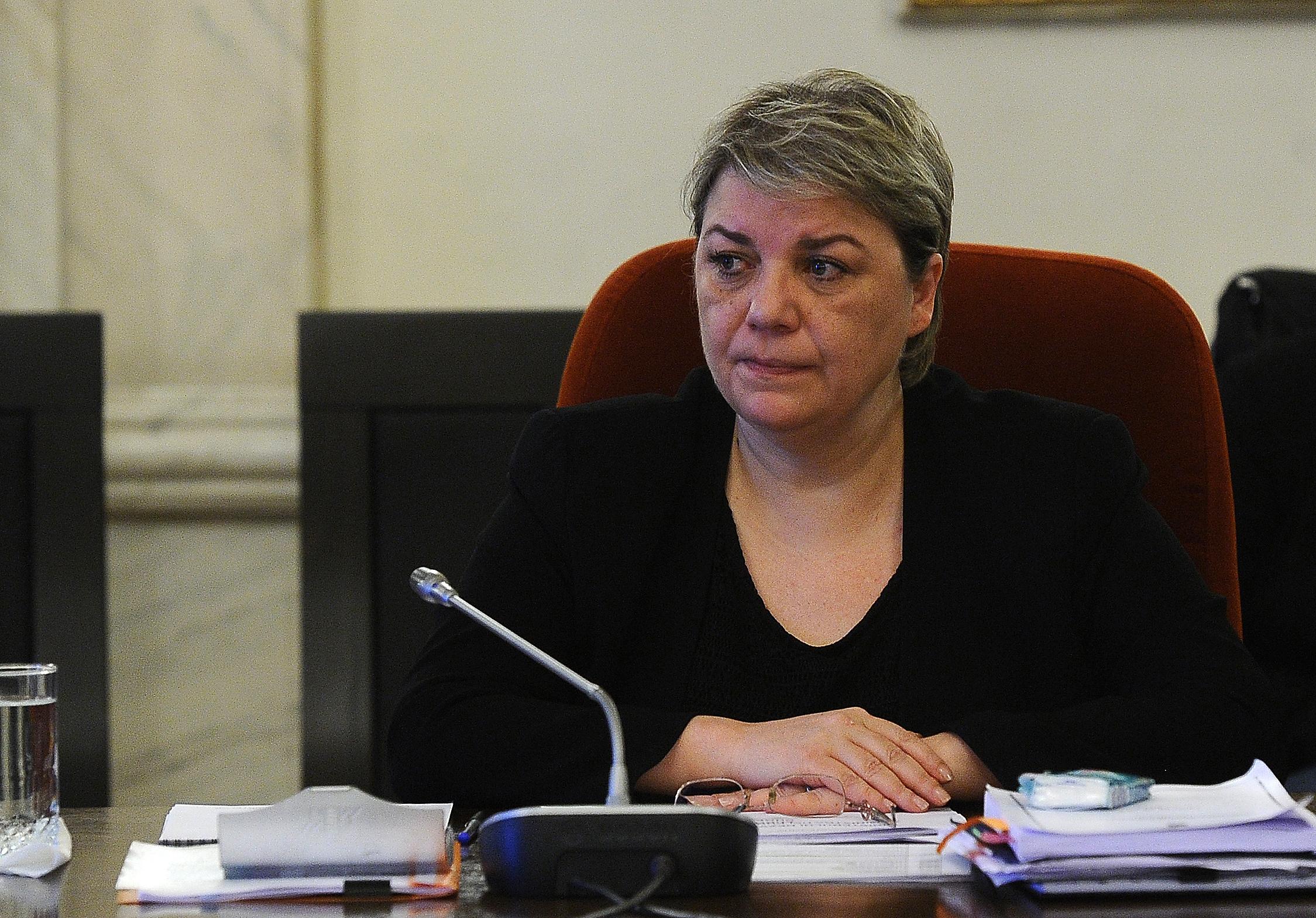 Vicepremierul Shhaideh vrea schimbarea Constitutiei.
