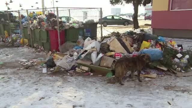 Strazile din Orsova, pline cu mormane de gunoaie. Cum incearca autoritatile locale sa rezolve problema