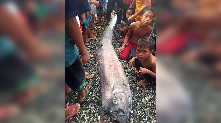 Aparitia care ii infioara pe filipinezi. De ce este semn rau atunci cand un peste panglica apare la suprafata oceanului. FOTO